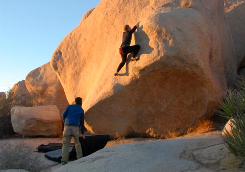 escalar en Joshua Tree