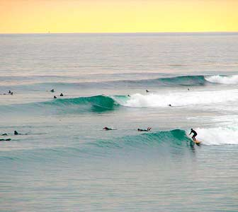Surf en California